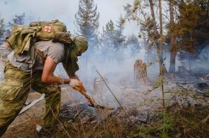 გორის რაიონის სოფელ ბოშურში ტყე იწვის