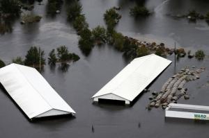 """ქარიშხალ """"ფლორენსს"""" 35 ადამიანი ემსხვერპლა"""