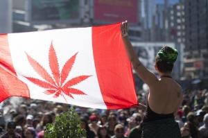 კანადამ მარიხუანას ლეგალიზაციას მხარი დაუჭირა
