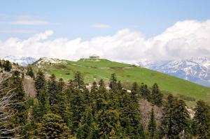 ხვამლის მთაზე ტრაქტორით უნებართვო არქეოლოგიურ სამუშაოებს აწარმოებენ