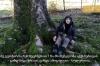 ამ ხეს არავის გავატან, შევაკვდები - 94 წლის ოლია თოდუა 150 წლის მაგნოლიას გაყიდვაზე უარს ამბობს