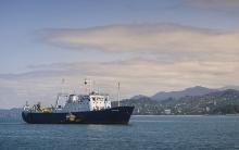 შავი ზღვის დაბინძურების 3 ფაქტი გამოვლინდა