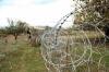 რუსმა სამხედროებმა სოფელ ზარდიაანთკარის მცხოვრები დააკავეს